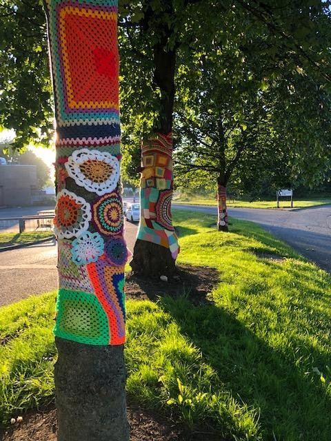 Christmas Yarn Bombing.Yarnbombing Hits Houghton Why Knitting Has Been Springing