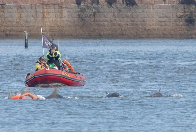 This is the shot Daz Martin took of Verity Green as she was joined by dolphins in the sea off Roker Beach as she trains to swim the English Channel.