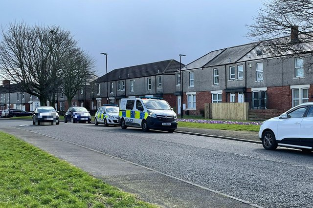Police are investigating the incident which took place at Tyne Gardens, Concord.