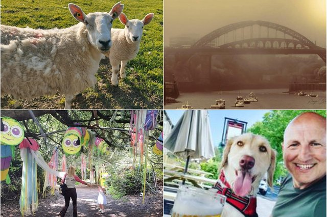 Some of your favourite pictures taken over the bank holiday weekend.
