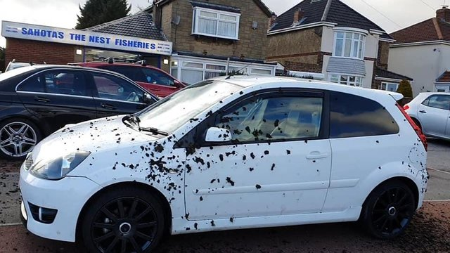 A car was covered in dirt in Shotton Colliery.