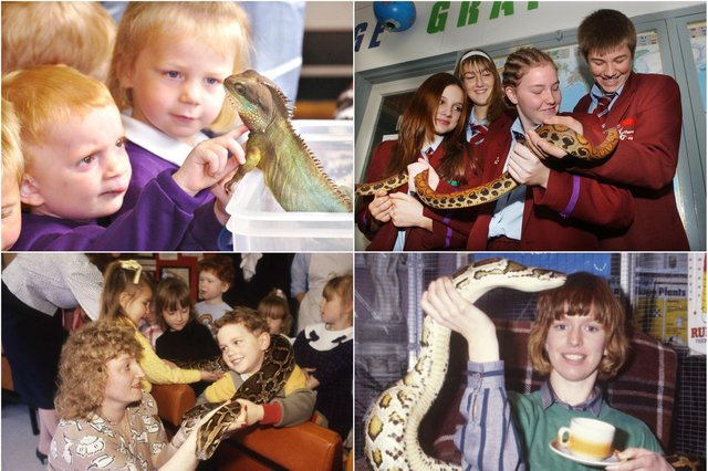 Is there a reptile scene that you remember from these Sunderland and County Durham scenes?