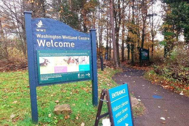 There will be fewer restrictions for visitors at Washington Wetland Centre from May 17.