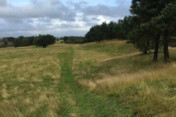 The former Elemore golf course