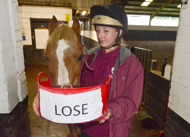Yellow the psychic pony picks the 'lose' feeding bowl for England's game against Denmark as groom Amelia Stubbs looks on.