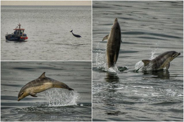 Pictures by Ian Maggiore taken from Roker Pier