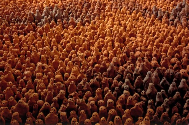 'Fields for the British Isles by Antony Gormley is coming to Sunderland.