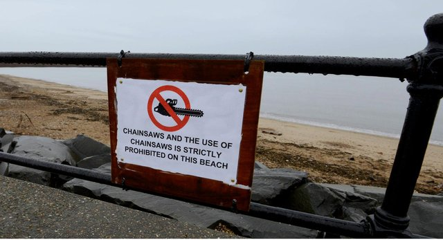 Chainsaws are prohibited on the beach
