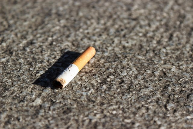 Sunderland City Council took court action against six people after they dropped cigarette ends.