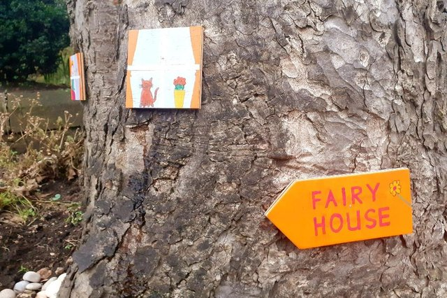 The fairies have set up home in a tree outside Washington Old Hall.
