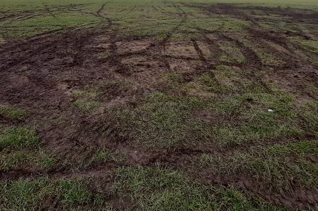 Grass was left damaged on King George V Playing Fields in Ryhope.