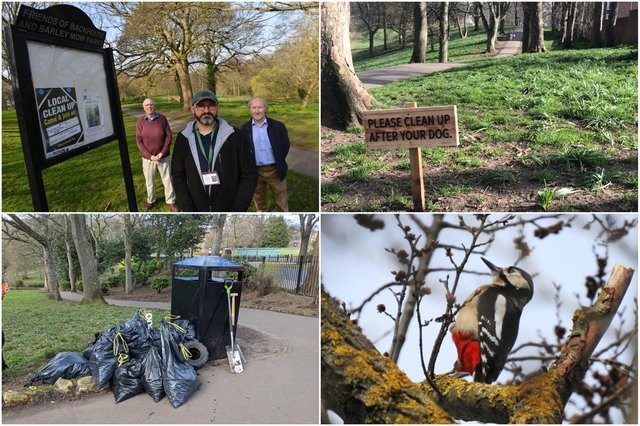 Ongoing improvement works at Backhouse Park