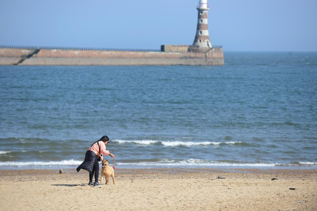 This is what to expect from the weather in Sunderland this bank holiday weekend.