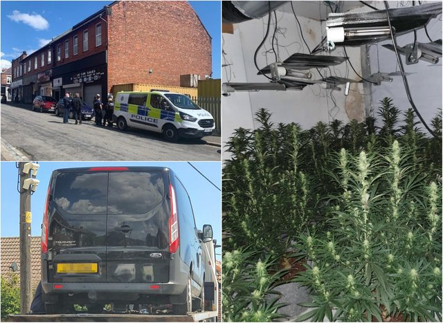 Officers dismantled thirty cannabis plants and seized two vehicles in crackdown on crime in Horden.