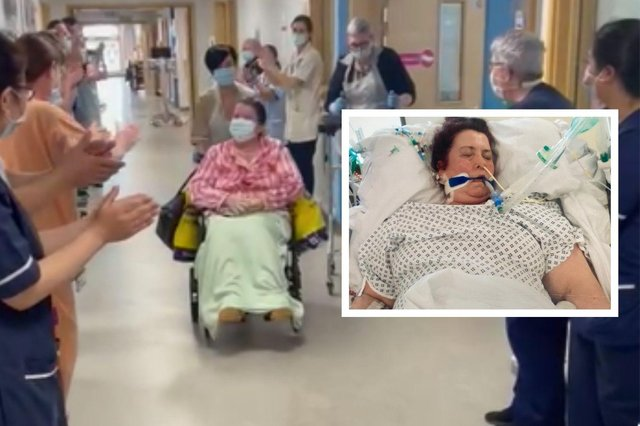 Staff cheer as Lesley Scott is discharged from hospital. Inset: Lesley in intensive care on a ventilator.