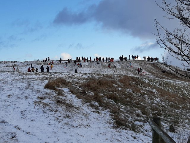 Families out on Cleadon Hills sledging yesterday, with the nature reserve one of many popular spots during the winter weather.
