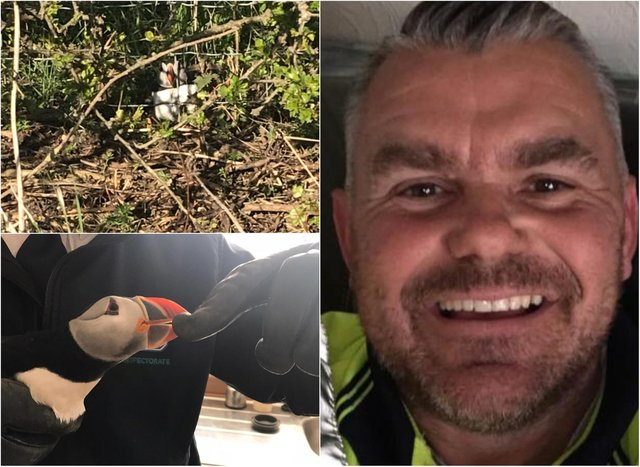 Stephen Ward has spoke of his surprise after finding a puffin while out walking his dog in County Durham.