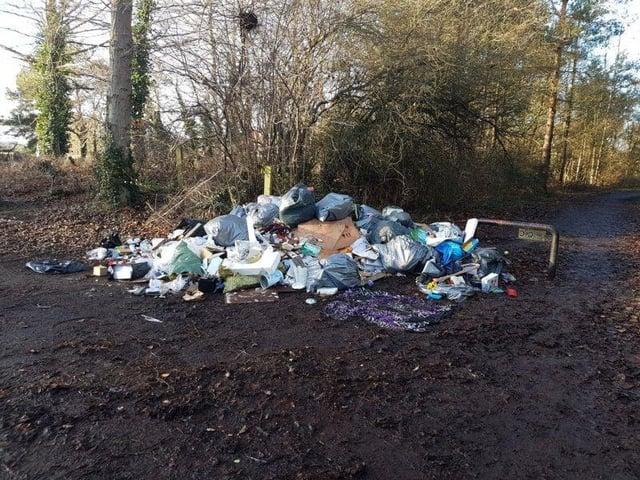 Rubbish dumped near James Steel Park in Washington.