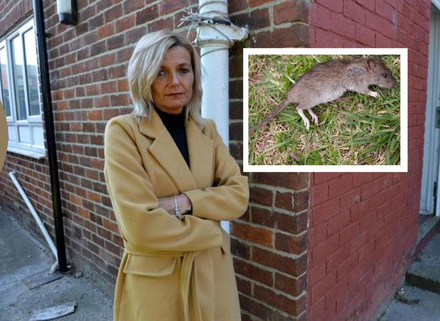 Lynsey Talbot found a rat in her garden after flooding caused by a burst waste pipe in her Gentoo home in South Hylton