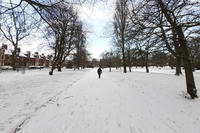 Wrap up warm if you're heading out today, with the snow and cold temperatures expected to last.